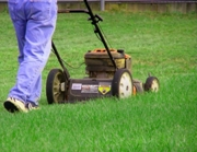 Person mowing yard